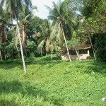 Ancienne maison sri-lankaise